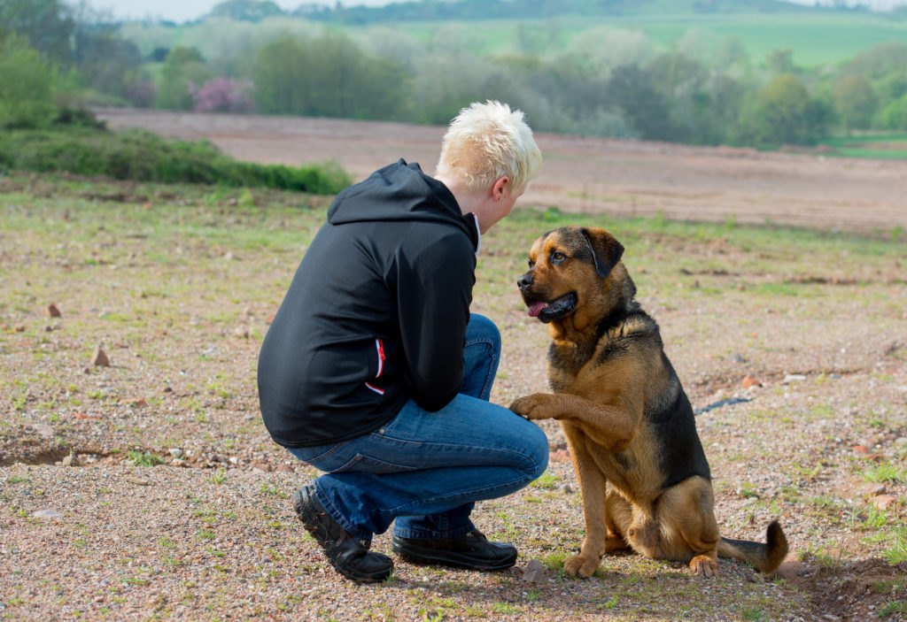 Rescue dogs, resilience and surviving sexual violence - Marie Yates